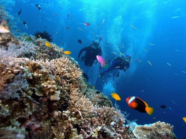 Thời điểm đẹp nhất để du lịch Phú Quốc là khoảng từ tháng 12 đến tháng 3 năm sau. Ảnh: ST