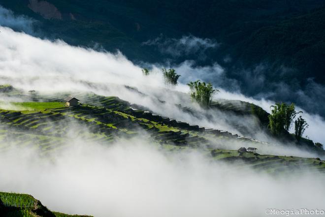 Thiên đường mây Y Tý