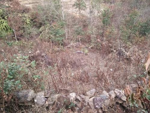 Kỳ bí ngôi mộ vua Mông ở Mù Cang Chải