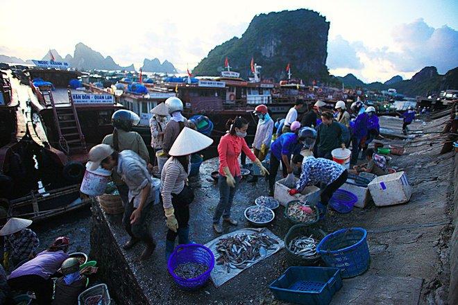 Chợ hải sản Cô Tô