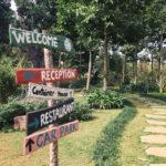 Đưa cả gia đình 'đi trốn' với 5 homestay xung quanh Hà Nội