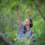 Khách hái đào chín, dâu tây đỏ tại vườn ở Sa Pa