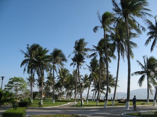 Phố biển Quy Nhơn
