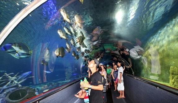 Viện Thái Dương Học